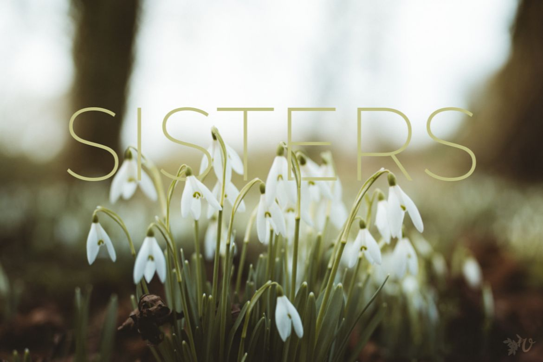 SISTERS-1170x780